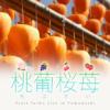 桃葡桜苺 -もぶさい- | Fruits farm List in Yamanashi|山梨県のフルーツファームを